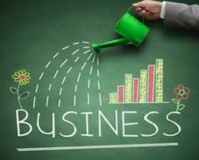 Driving business growth with consultant support image