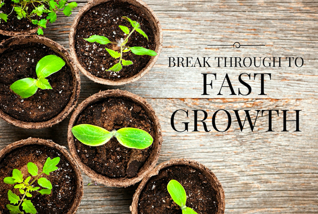 Break Through to Fast Growth image